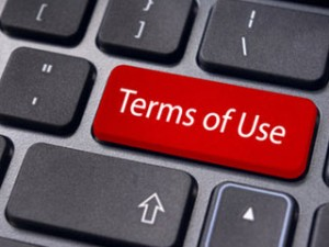 Page-Terms-of-Use